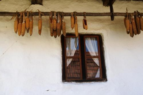 Bedo_20081010_095_Komloska